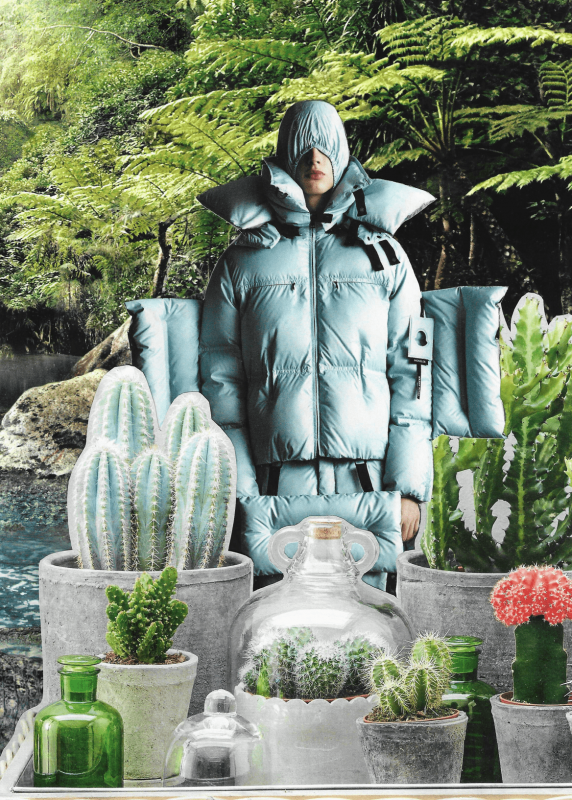 a fashin guy in an big blue jacket with jugle in the back and diffrent cacti in the front